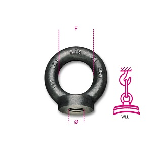 8042EN Lifting eye nuts, DIN 582, self-coloured